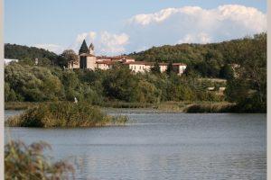 Tra cielo e acqua: le Torbiere del Sebino e il Monastero di San Pietro @ ritrovo Provaglio d'Iseo | Iseo | Lombardia | Italia