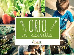 Orto in cassetta @ Largo Formentone Brescia | Brescia | Lombardia | Italia