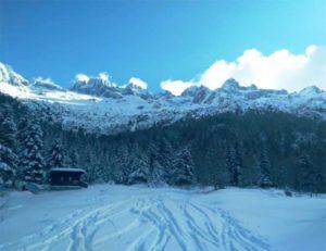 Inverno nel Parco faunistico dell'Adamello @ foresteria incisioni rupestri   Paspardo   Italia