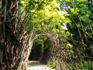 In ascolto a Padernello - momento meditativo al Ponte di San Vigilio @ Castello di Padernello | Padernello | Lombardia | Italia