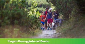 Magica Passeggiata nel Bosco @ Chalet Maniva | Giogo del Maniva | Lombardia | Italia