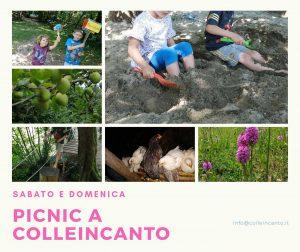 Picnic a Colleincanto @ Colleincanto | Gavardo | Lombardia | Italia