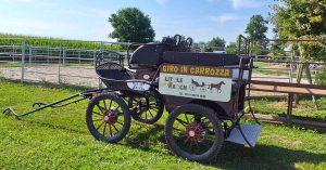 Giro in carrozza al Little Ranch @ Little Ranch | Lograto | Lombardia | Italia