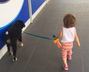 Webinar sulla relazione tra cani e bambini @ online