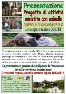 Attività assistita con asinelle @ Lago Sette Fontane