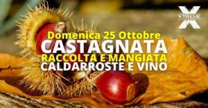 Castagnata - Raccolta e Mangiata @ Bovezzo