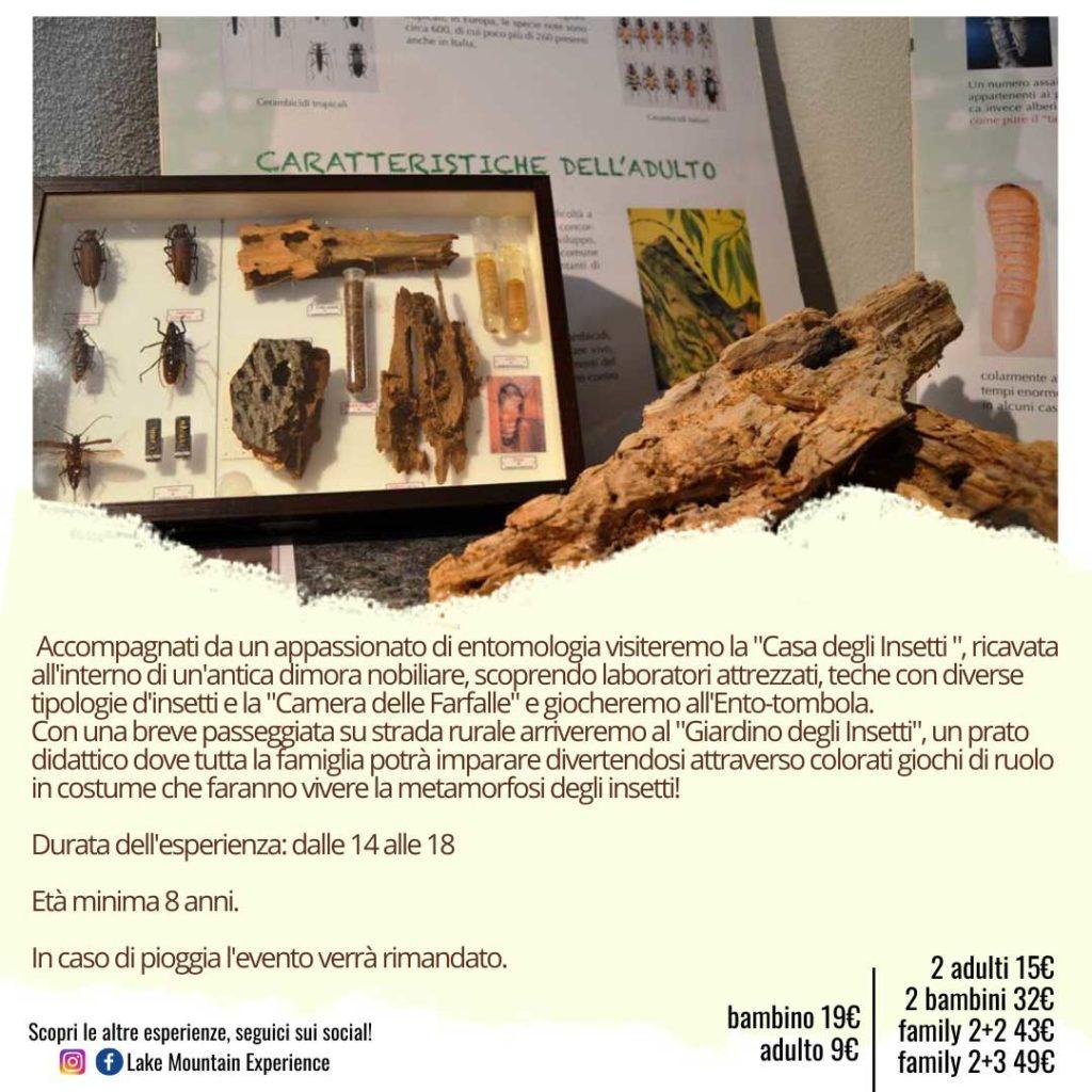 mondo-insetti-appuntamenti-parco-faunistico-Adamello-maggio-2021