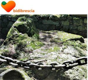 Visita guidata online con BidiBrescia @ online - piattaforma Zoom