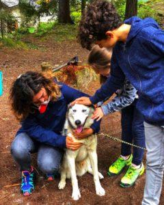 Il richiamo del parco con i cani da slitta - sleddog e husky trekking @ Huskyland Scuola italiana Sleddog