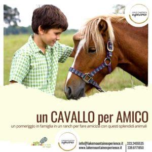 Val Camonica - Un cavallo per amico @ ritrovo Cerveno (Valle Camonica)